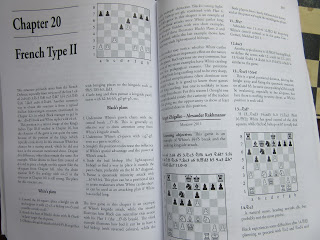 "Inside of Chess Structures A Grandmaster Guide"" by GM Maricio Flores Rios."